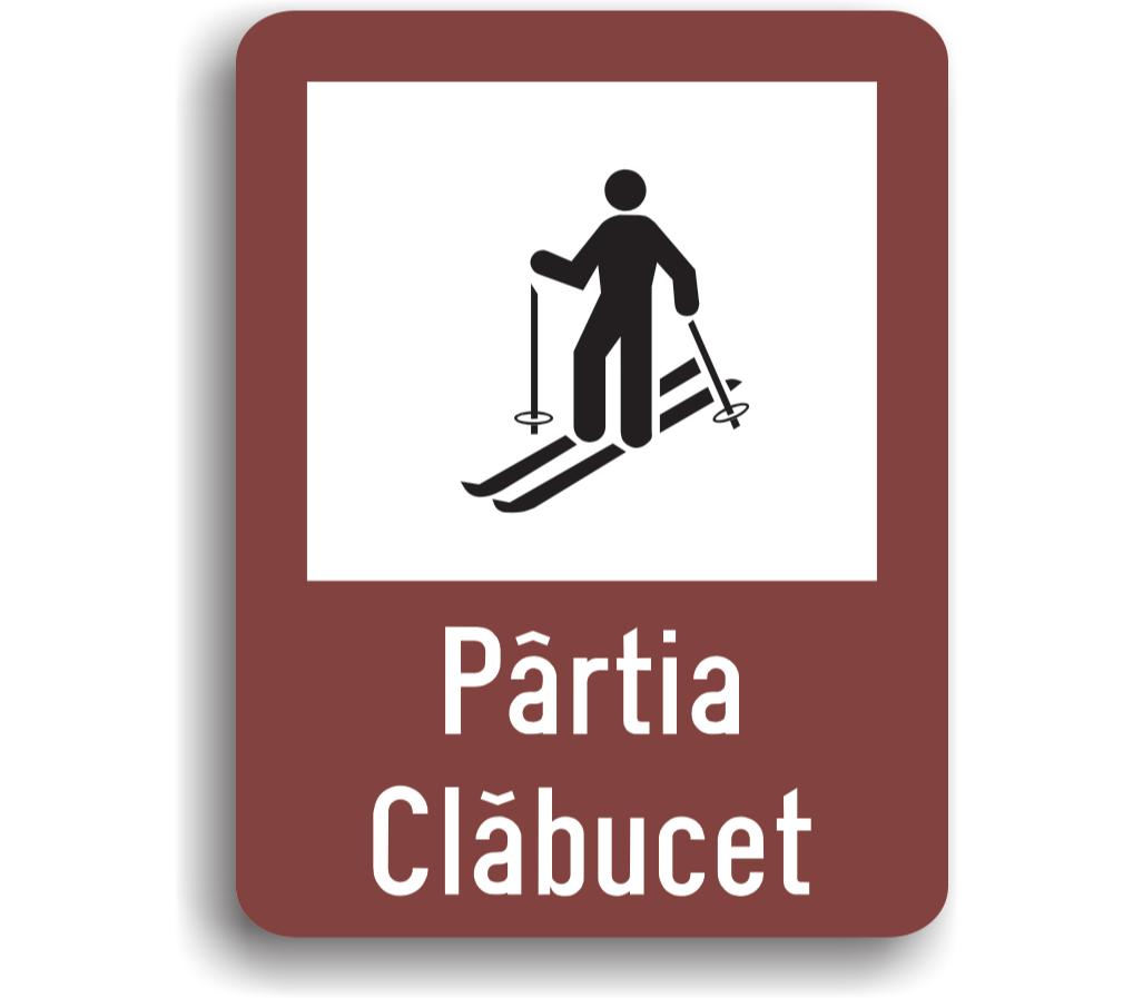 Pârtie ski